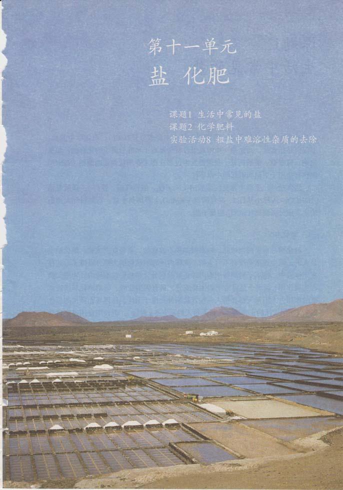 人教版九年级下册化学第十一单元盐化肥电子书