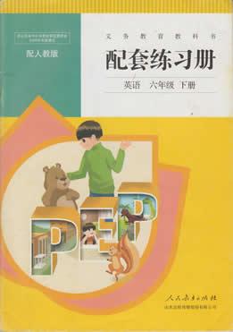人教版六年级下册英语配套练习册答案