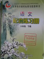 2016年配套练习册六年级语文下册鲁教版