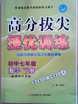 尖子生课时训练七年级下数学江苏青少年儿童出版社