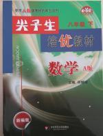 尖子生培优教材八年级数学下册A版人教版