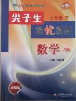 尖子生培优教材七年级数学下册A版人教版