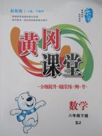 黄冈课堂六年级数学下册人教版
