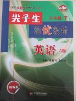 尖子生培优教材八年级英语下册A版人教版