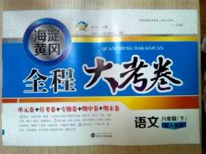 海淀黄冈全程大考卷八年级下语文武汉大学出版社