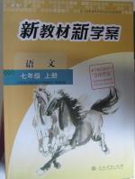 人教版七年级上册语文新教材新学案答案