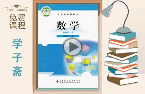 北师大版八年级上册数学教学视频