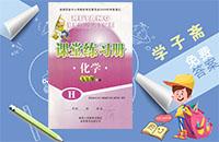 陕西省九年级上册化学课堂练习册h版答案