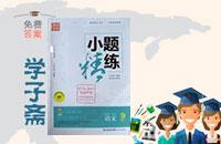 2016年通城学典小题精练九年级语文下册苏教版答案