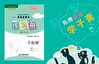 江西省人教版九年级下册化学领航新课标练习册答案