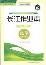 人教版九年级下册化学长江作业本答案