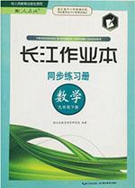人教版九年级下册数学长江作业本答案
