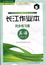 人教版九年级下册英语长江作业本答案